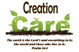 Creation Care/Caring for Creation and Your Community by Gardening